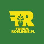 Forum Roślinne - Forum o Roślinach